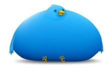 twitter_bigbird_nextnature-530x346